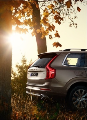 xc90fall_small
